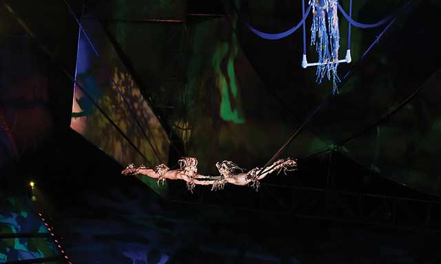 Mystere Discount Tickets